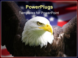 PowerPoint Template - bald eagle with american flag focus on head