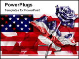 PowerPoint Template - A single rose against a black background digitally enhanced in the colours of the American flag.