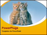 PowerPoint Template - sitting cats in rounded background