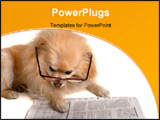 PowerPoint Template - smart dog reading the newspaper
