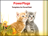 PowerPoint Template - two kittle and flowers