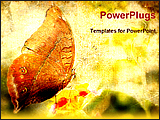 PowerPoint Template - a image of a vintage butterfly