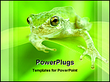 PowerPoint Template - image of a green frog