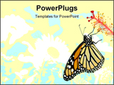PowerPoint Template - monarch butterfly on white