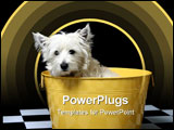 PowerPoint Template - west highland white terrier or westie