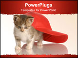 PowerPoint Template - kitten playing under red baseball cap isolated on white background