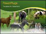 PowerPoint Template - wild animals