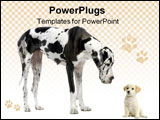 PowerPoint Template - great dane harlequin and puppy labrador looking at each other