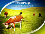 PowerPoint Template - Beautiful view with grazing cows and blue sky