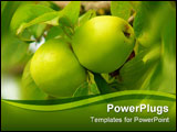 PowerPoint Template - Two green apples suspended on a tree