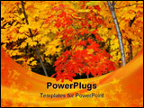 PowerPoint Template - Trees with colorful autumn leaves in forest