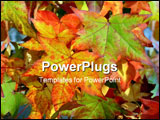 PowerPoint Template - colorful autumn leaves