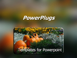PowerPoint Template - Pumpkins in a pumpkin patch with wild flowers.