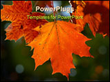 PowerPoint Template - maple leaf