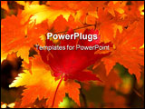 PowerPoint Template - Red maple leaf on the yellow leaves as a background