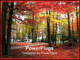 PowerPoint Template - Colorful trees in a beautiful Michigan state park