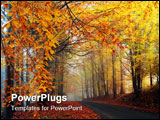 PowerPoint Template - autumn colors in misty morning in forest