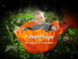 PowerPoint Template - A little baby  sitting in a poppy flower