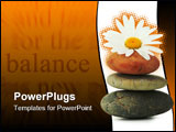 PowerPoint Template - atmosphere zen three stones and a daisy flower isolated