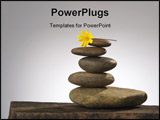 PowerPoint Template - balancing river rocks with daisy on top