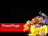 PowerPoint Template - flowers on black background