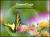 PowerPoint Template - Butterfly on a flower
