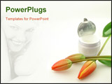 PowerPoint Template - Tulips and cream isolated over white concept of beauty.