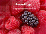 PowerPoint Template - A single blackberry stands out among raspberries