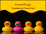 PowerPoint Template - purple rubber duck surrounded by yellow rubber ducks