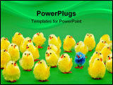 PowerPoint Template - A group of easter chicks with one odd one standing out