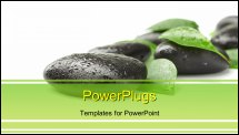 PowerPoint Template - Black stones and green leaves