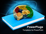 PowerPoint Template - A model brain on a book isolated on a white background Studying