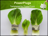 PowerPoint Template - 2 big green vegetable leaves are tightly belted with a 100$ note a small leaf is in between them
