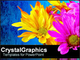 PowerPoint Template - Neon yellow and pink flowers over blue.