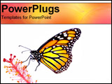 PowerPoint Template - Monarch Butterfly resting on a flower
