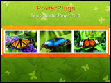 PowerPoint Template - A large butterfly resting on a leaf