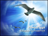 PowerPoint Template - Chasing the leader birds blue sky flight