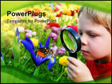 PowerPoint Template - Six years old boy in the spring garden observing a butterfly on flower through a magnifying glass.