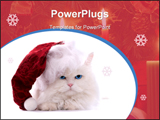 PowerPoint Template - Amusing white fluffy cat in the Santa cap