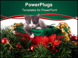 PowerPoint Template - An adorable gray kitten in a red and green basket surrounded by Christmas decorations.