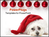 PowerPoint Template - christmas pooch resting with a santa hat. have a merry christmas
