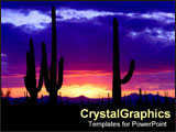PowerPoint Template - Rich colored sunset of cactus in desert.