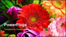 PowerPoint Template - close up shot of a very abundant spring bouquet. Slight graininess, best at smaller sizes