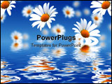 PowerPoint Template - Camomiles background. Flowers falling into water over sky.