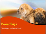PowerPoint Template - Two shar-pei puppies in love