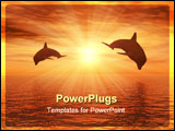 PowerPoint Template - two dolphins floating at ocean