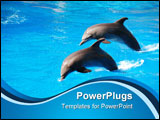 PowerPoint Template - Two dolphin jumping in Durban