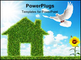 PowerPoint Template - white dove flying towards green grass house