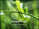 PowerPoint Template - water drop on green grass. extreme macro close-up