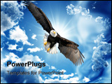 PowerPoint Template - Bald eagle flying in a cloudless sky in Alaska